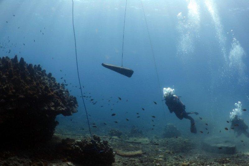 PLTU Batang bangun dua terumbu karang buatan