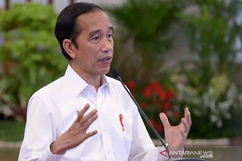 Presiden: Pendampingan bisnis perhutanan sosial harus terintegrasi