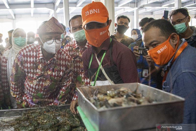 KKP ajak UMKM pengolahan ikan masuk pasar laut Indonesia