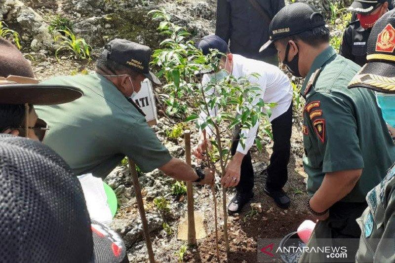 Perhutani Pati akan hijaukan 20 hektare lahan di Bukit Pandang