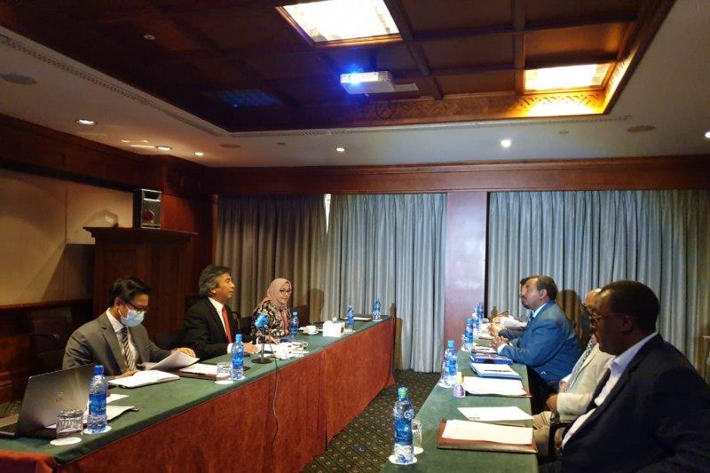 Dubes RI bertemu KADIN Ethiopia promosi peluang investasi di Indonesia