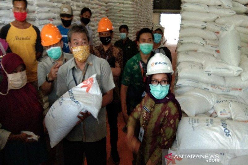 Tak perlu khawatir, produksi beras di Pekalongan surplus 57.437 ton