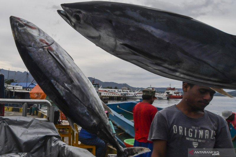 Menteri Trenggono: KKP kembangkan lima koridor logistik ikan