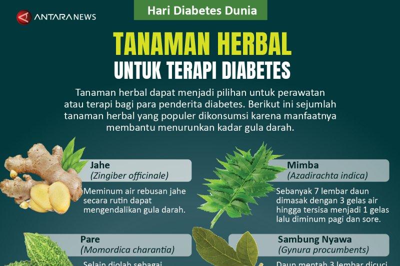 Tanaman herbal untuk terapi diabetes