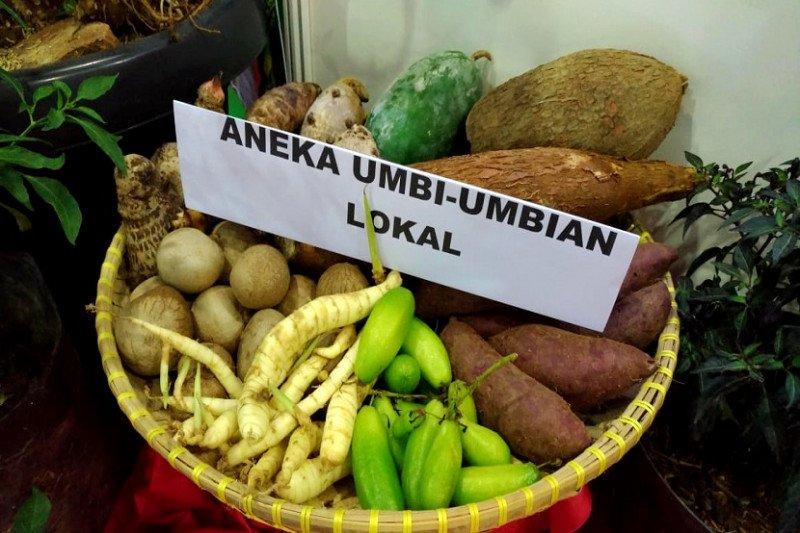 Kementan paparkan 3 strategi genjot akses pasar pangan lokal