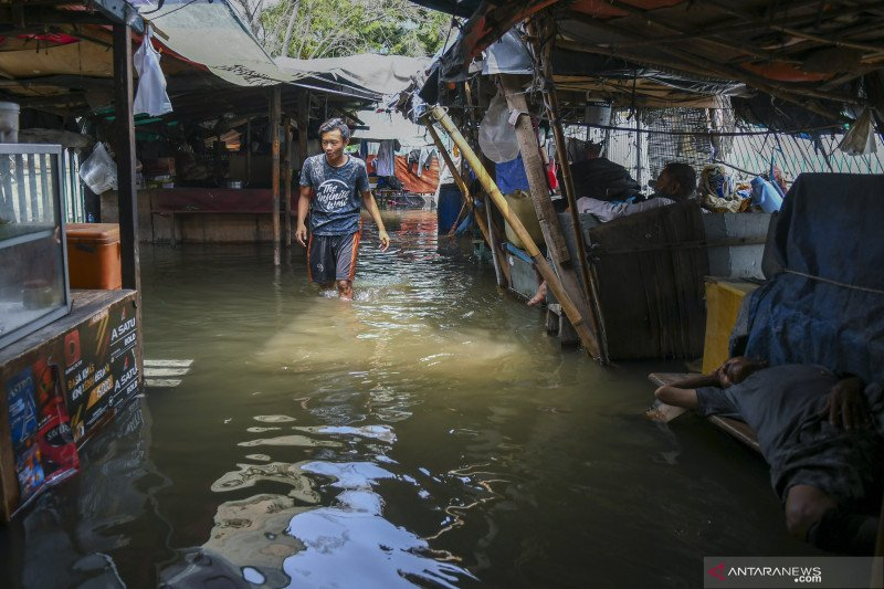 SDA DKI sebut banjir rob capai Kebon Jeruk dan Grogol Petamburan