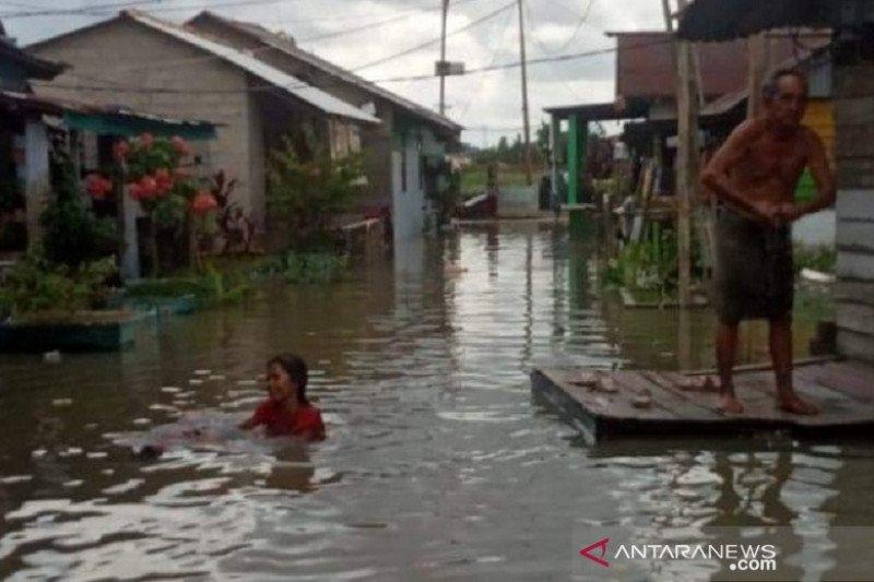 Banjir rob, puluhan rumah warga di Pangkalpinang terendam