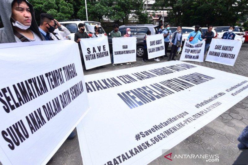 Penyelamat hutan Sumsel-Jambi minta hentikan bangun jalan batu bara