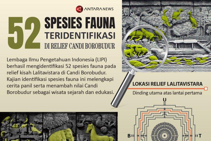 52 spesies fauna teridentifikasi di relief Candi Borobudur