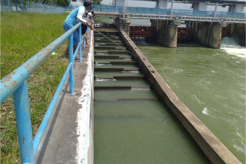 KKP dorong pembangunan jalur migrasi ikan dalam pembuatan bendungan