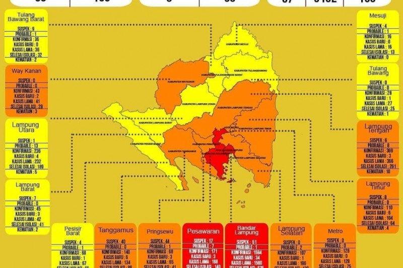 Dinkes: Kasus COVID-19 di Lampung bertambah 67 dan sembuh delapan