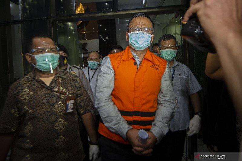 """Benih lobster jadi """"tsunami"""" politik Prabowo dan Jokowi"""