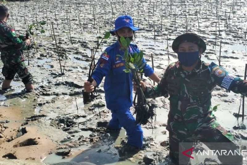 Sat Polair Polres Bengkayang tanam mangrove cegah abrasi pantai