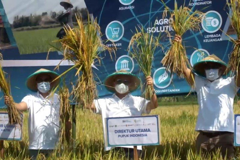 Agro Solution tekan ketergantungan petani terhadap pupuk bersubsidi