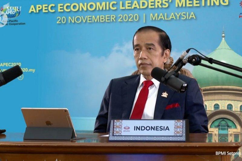 Indonesia serukan penguatan kerja sama ekonomi di KTT APEC 2020