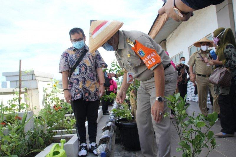 TP-PKK Jaksel gelar lomba unik menanam sayuran dalam botol bekas