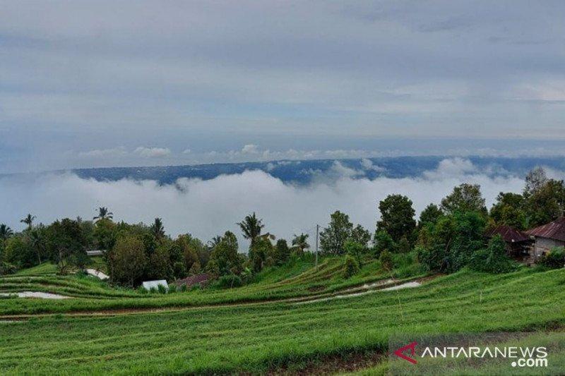 Mewujudkan mimpi Desa Panji Anom menjadi destinasi wisata alam