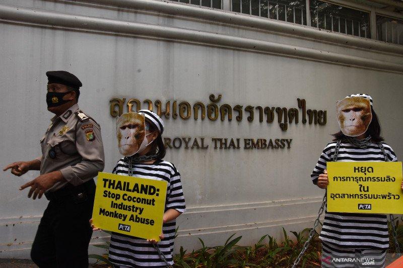 Aksi protes eksploitasi monyet di Kedubes Thailand