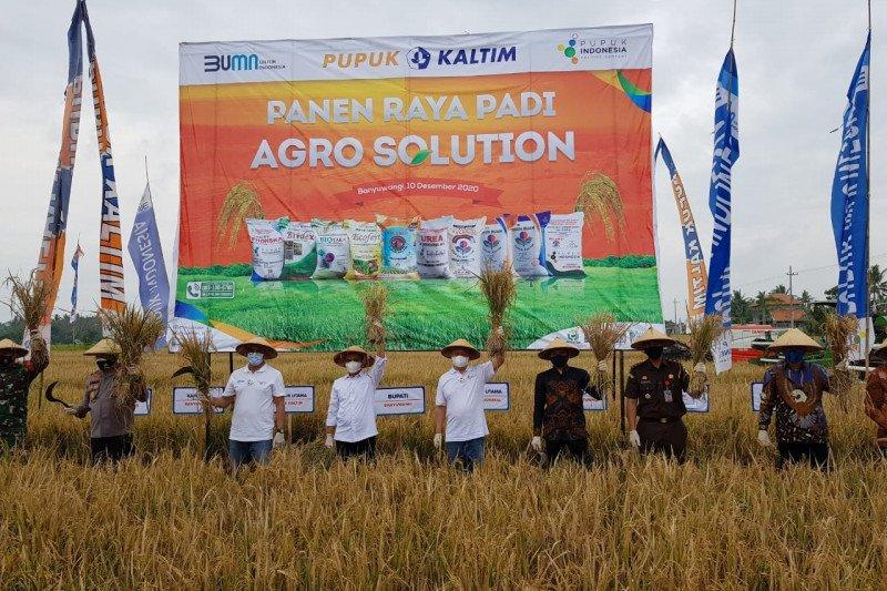 Pupuk Indonesia luncurkan Agro Solution genjot produktivitas pertanian