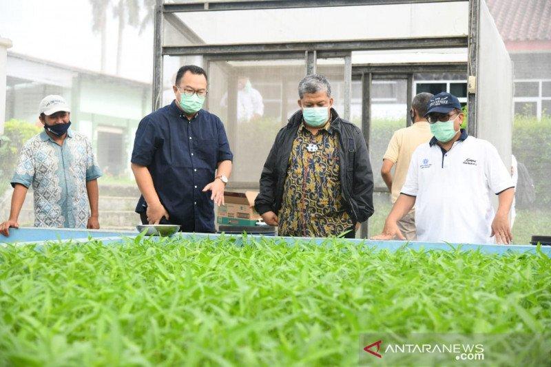 Fahri Hamzah kunjungi IPB University lihat inovasi pertanian