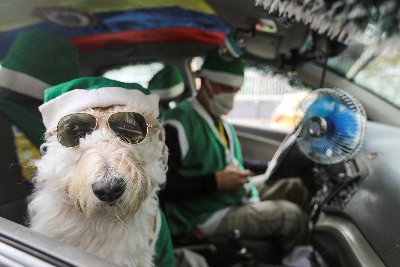 Sopir taksi dan kernet berbulu ramaikan Natal di Kolombia