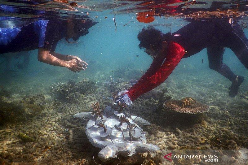 Mencegah salah urus kekayaan alam Pulau Enggano