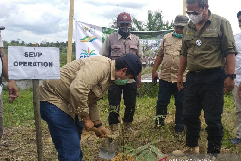PTPN V-BBKSDA Riau bentuk tim lindungi gajah sumatera