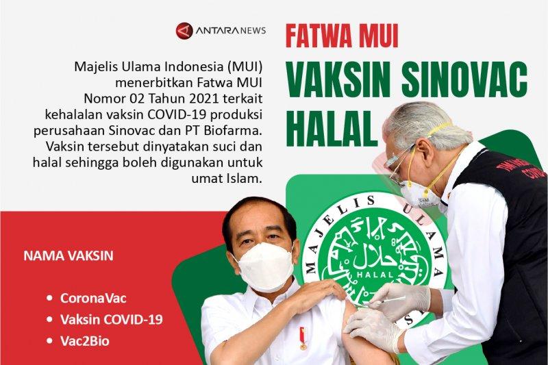 Fatwa MUI: Vaksin Sinovac halal
