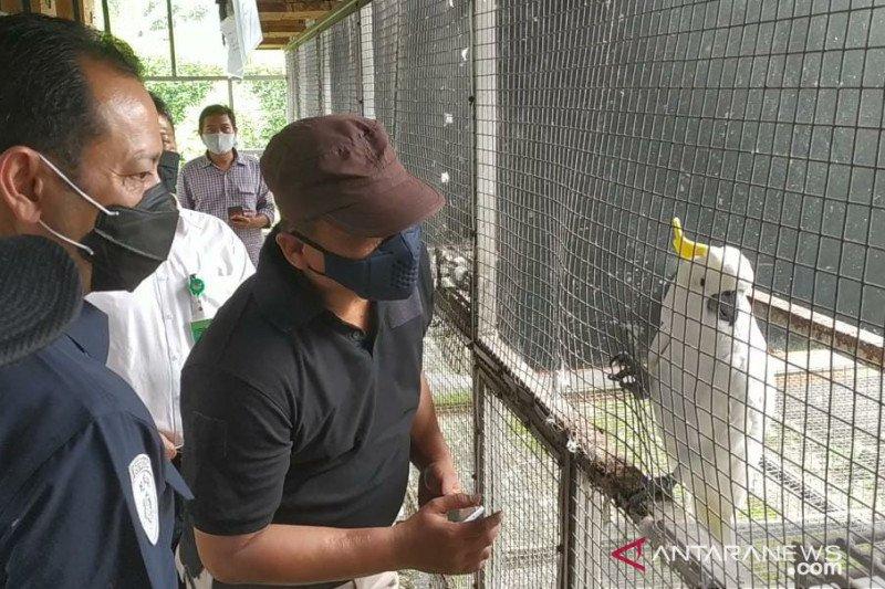 Polisi sita burung dilindungi dari penangkar ilegal di Sukabumi