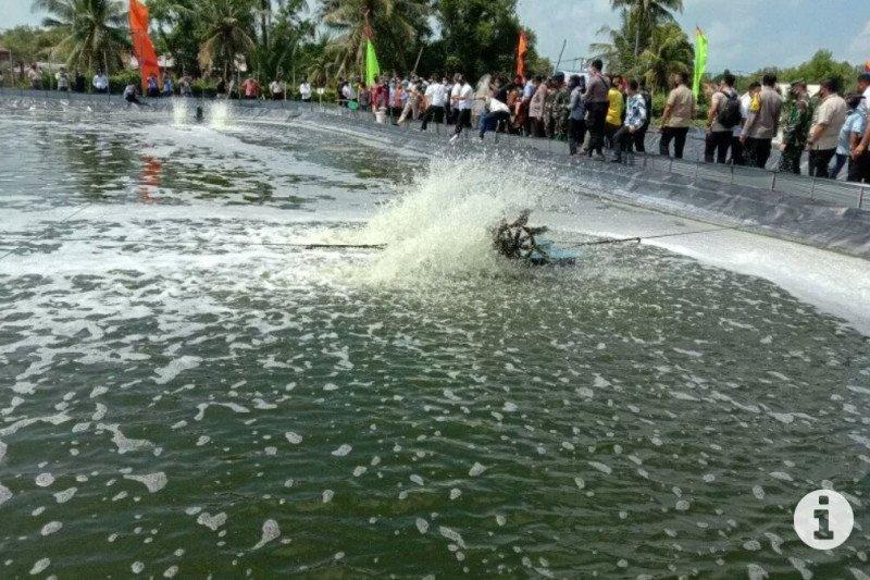 Nilai ekspor sektor perikanan Lampung capai Rp2,3 triliun
