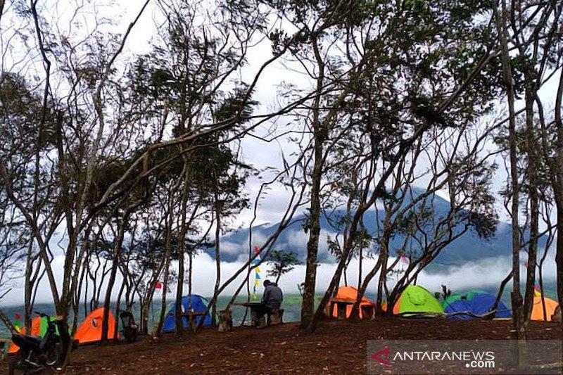 Petik tanaman dilindungi, Sekelompok pemuda dilarang daki Gunung Dempo