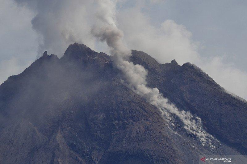 Kemarin Sinabung meletus, Merapi memuntahkan awan panas