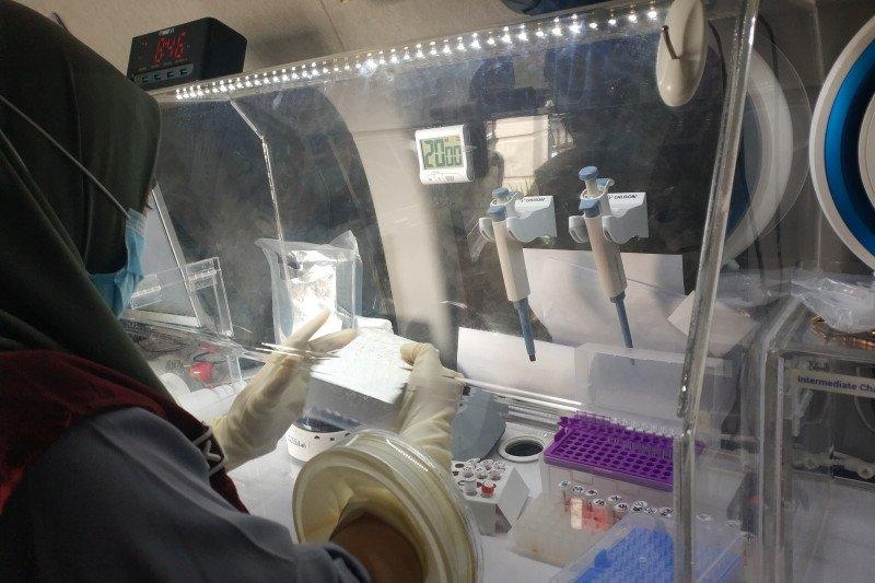 Sulbar prioritaskan tes cepat antigen bagi pengungsi bergejala klinis