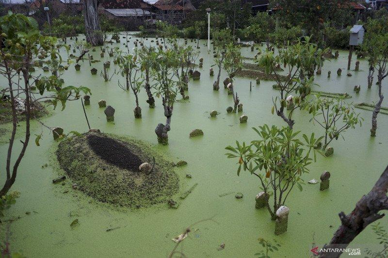Pekalongan alami penurunan tanah hingga enam centimeter pada tahun 2020