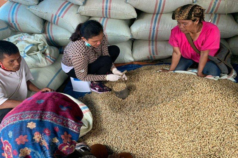 AEKI : Harga kopi dalam negeri bertahan stabil