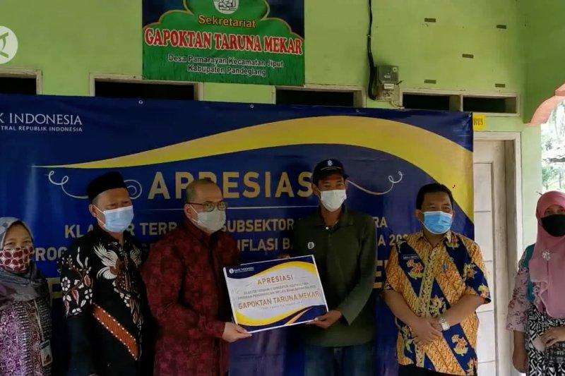 BI Banten apresiasi Gapoktan Taruna Mekar Pandeglang
