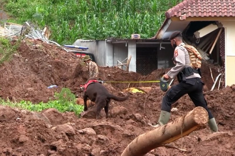Longsor Sumedang, tim SAR libatkan anjing pelacak untuk cari korban hilang
