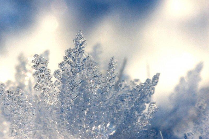 Festival salju Sapporo tetap berlangsung secara virtual