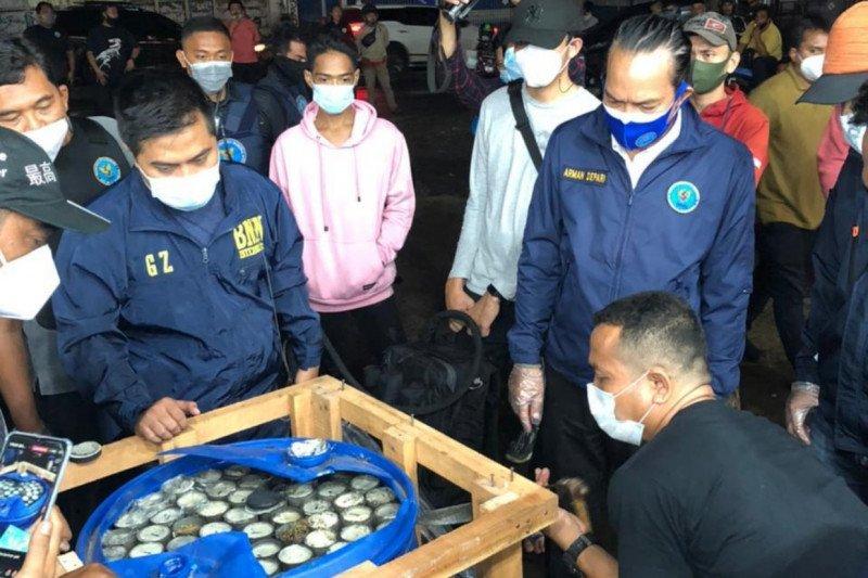 BNN gagalkan penyelundupan 450 kg ganja dalam paralon di Bogor