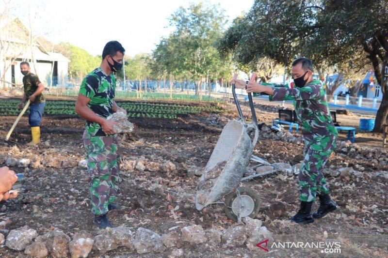 Ketika TNI AU menyulap tanah berkarang menjadi kebun sayur