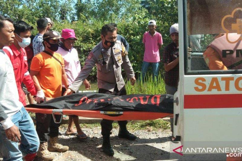 BKSDA duga warga Agam meninggal di Sungai Masang diserang buaya muara