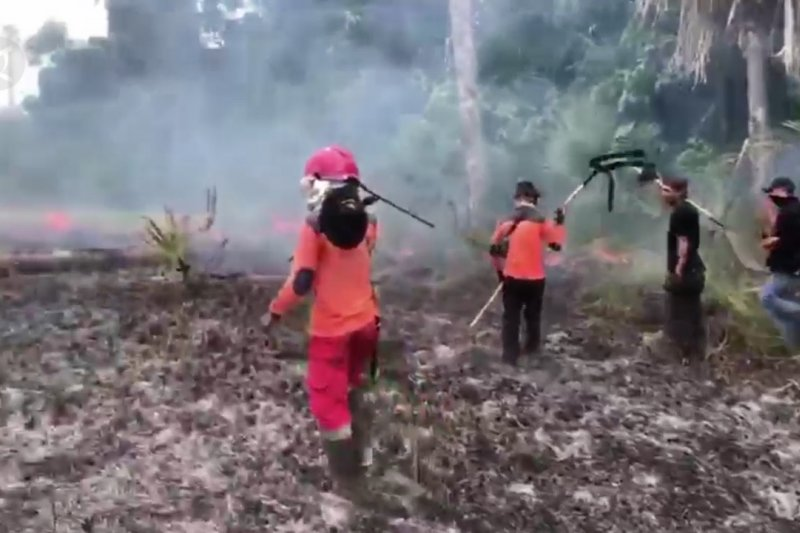 17,5 ha lahan Taman Nasional Rawa Aopa Watumohai sepekan terbakar