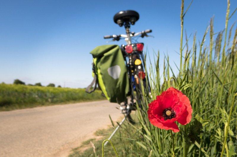 Rekomendasi tempat bersepeda aman untuk keluarga