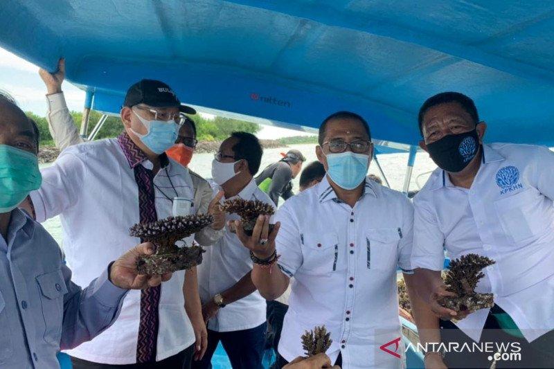 Komisi IV DPR ke Bali, KPKHN diharapkan tak rusak ekosistem laut