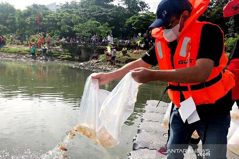 Tebar benih ikan, Djarot: Gerakan politik hijau PDIP