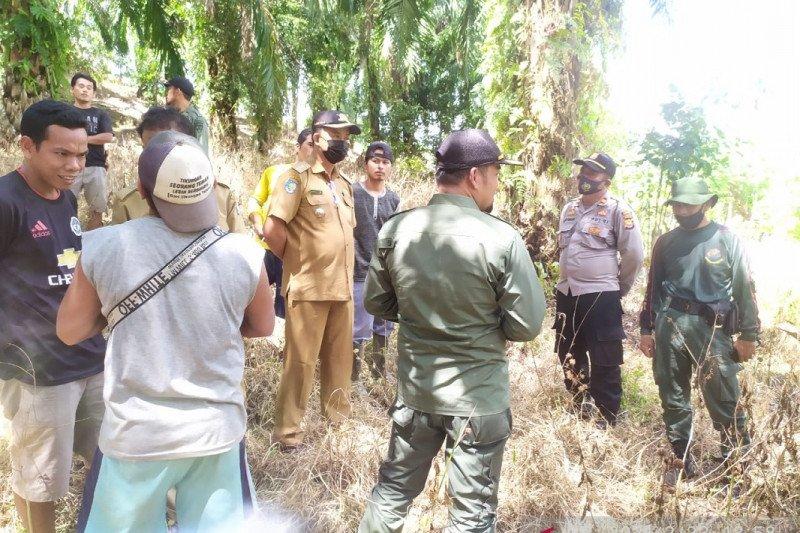 BKSDA Mukomuko cari bukti kemunculan harimau sumatera