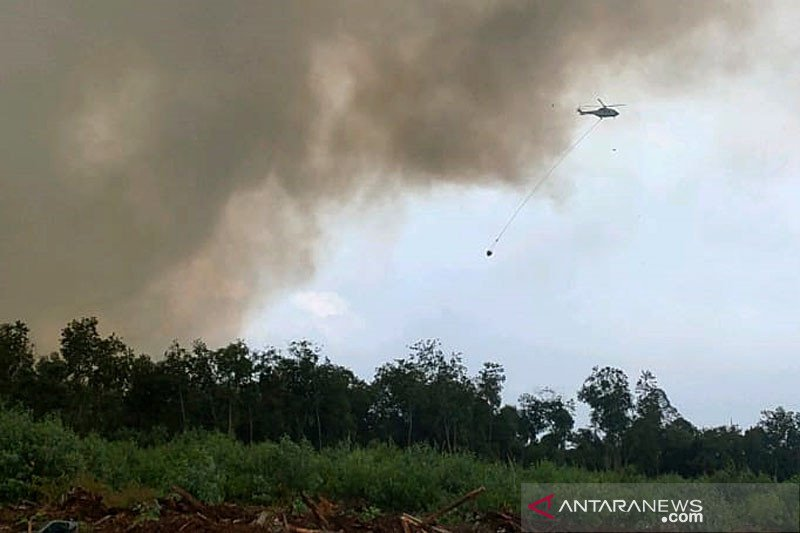 Helikopter dikerahkan untuk padamkan karhutla di Siak