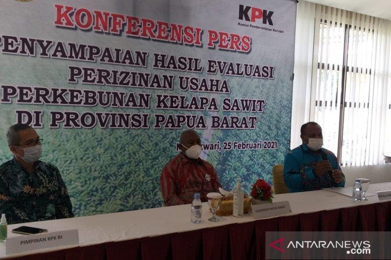 Pemprov Papua Barat-KPK evaluasi izin perkebunan kelapa sawit
