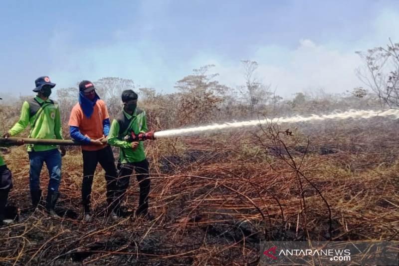 Sekitar enam hektare lahan di Nagan Raya terbakar