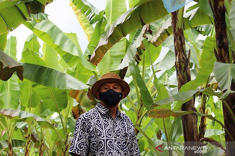 Menkop minta Lampung jadi model percontohan koperasi kemitraan